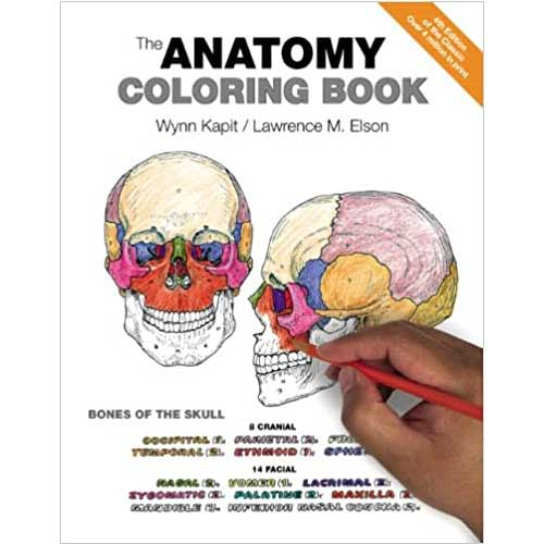 Image For The Anatomy Coloring Book 4th Edition