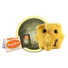 Image for Hepatitis Giant Microbes