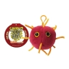Image for Coronavirus (COVID-19) Key Chain