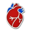 Image for Human Heart Lapel Pin