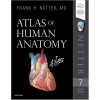 Image for Atlas of Human Anatomy (Netter Basic Science) 7th Edition