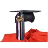 Image for College Color Tassels